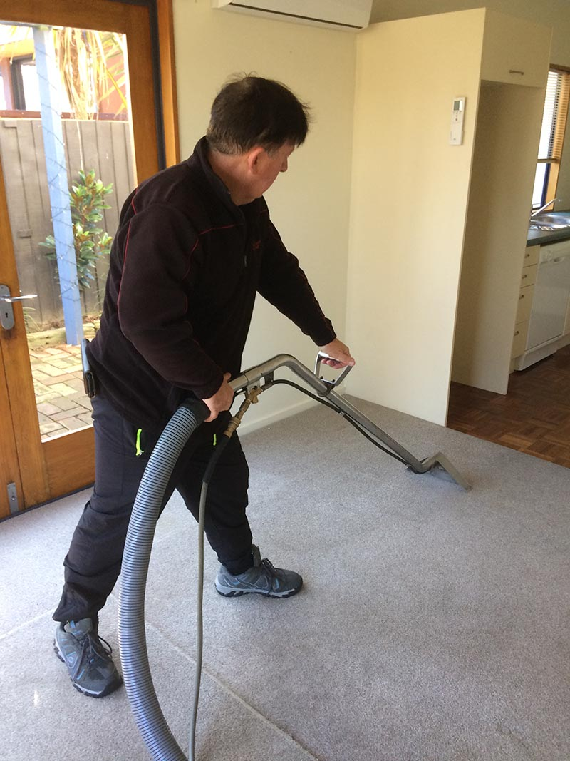 carpet cleaning chch