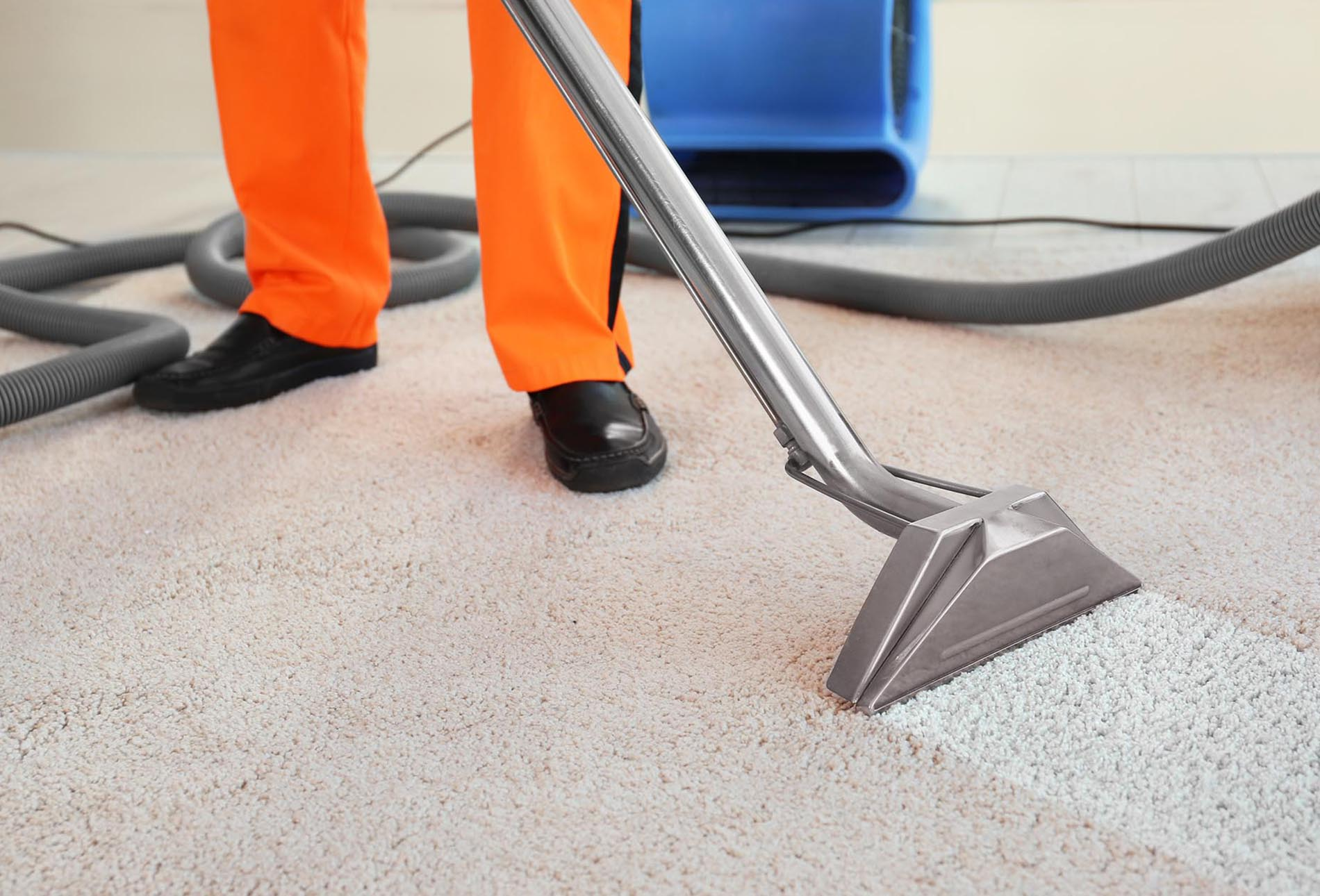 carpet cleaners christchurch